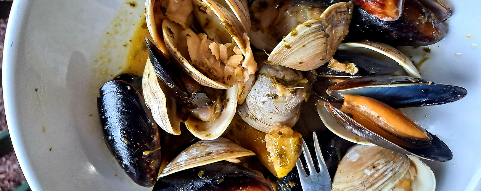 Clams and muscles